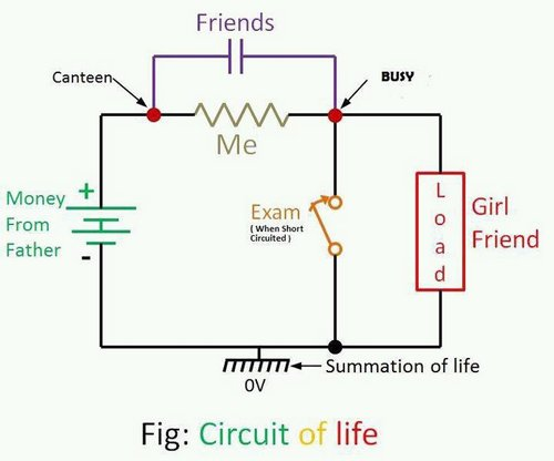 circuit-of-life